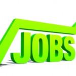 mmj jobs