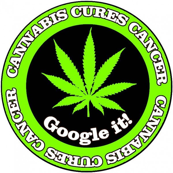 cannabis_cures_cancer_google_it-600x600